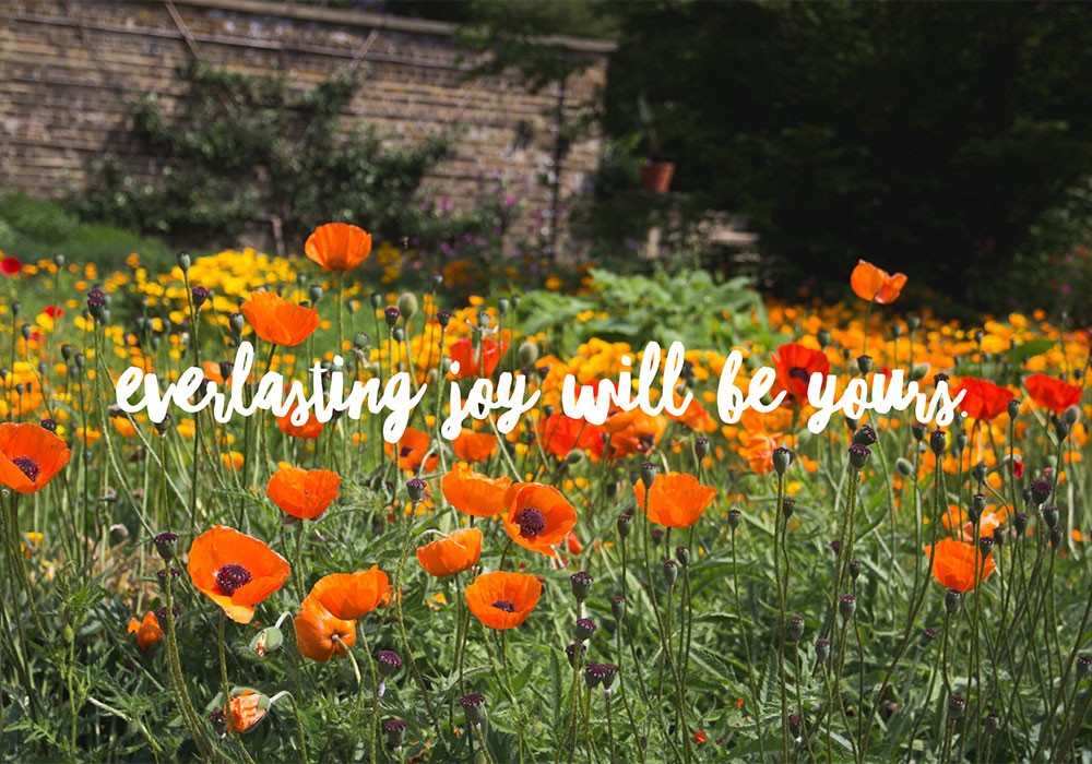 Photograph of flowers in Spring. Text in image: Everlasting joy will be yours.